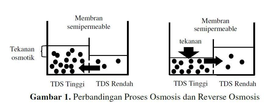 perbedaan osmosis dan reverse osmosis